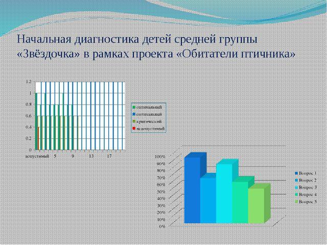 Начальная диагностика детей средней группы «Звёздочка» в рамках проекта «Обит...