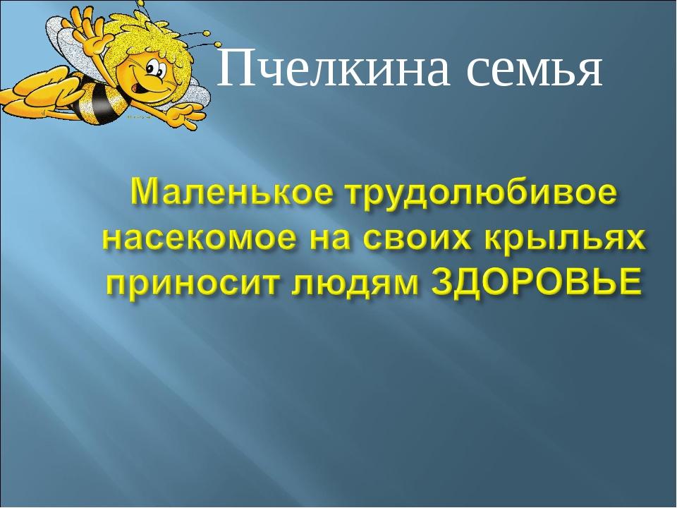 Пчелкина семья