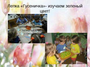 Лепка «Гусеничка»- изучаем зеленый цвет!