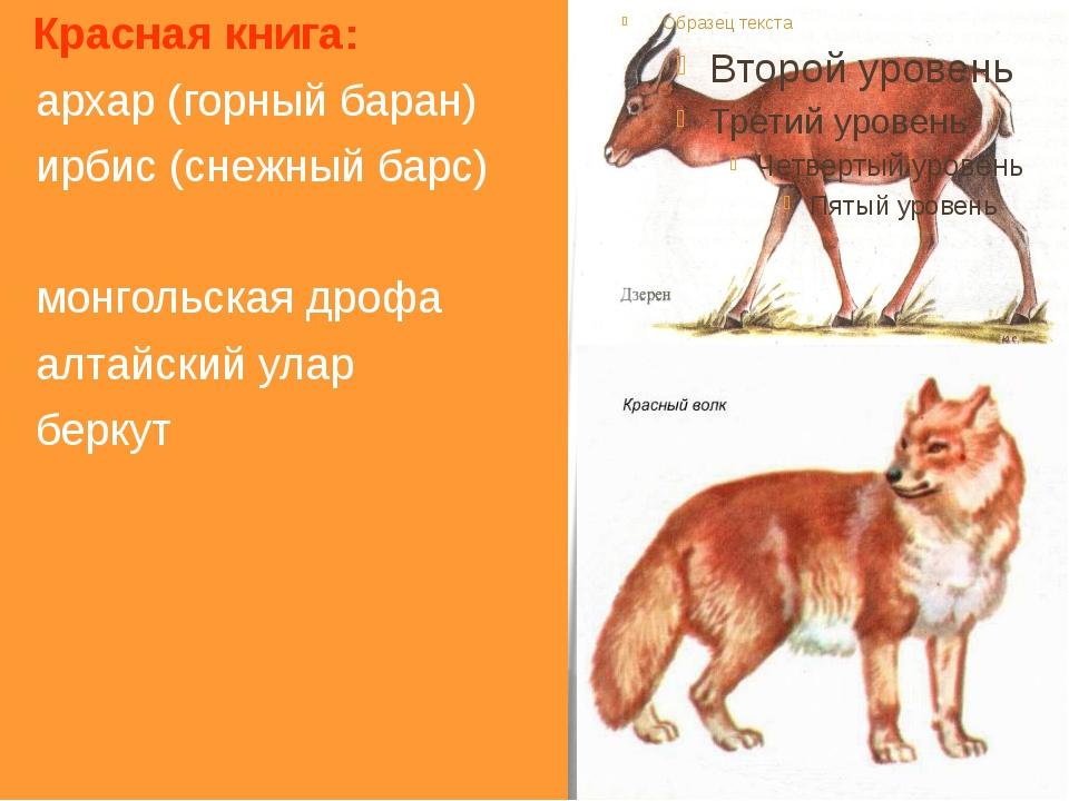 1 Фамилия исследователя геологии Саян в XX в.