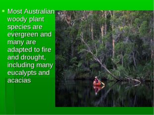 Most Australian woody plant species are evergreen and many are adapted to fir