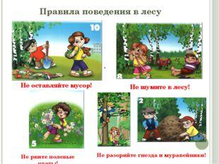 . Правила поведения в лесу Не оставляйте мусор! Не шумите в лесу! Не разоряйт
