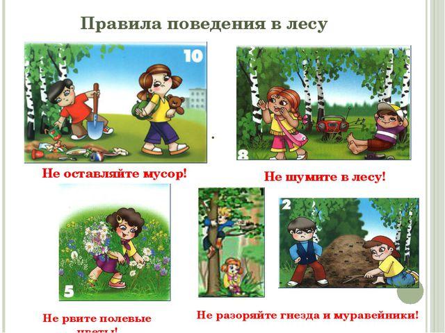 . Правила поведения в лесу Не оставляйте мусор! Не шумите в лесу! Не разоряйт...