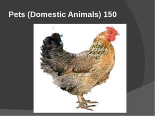 Pets (Domestic Animals) 150