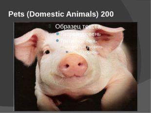 Pets (Domestic Animals) 200