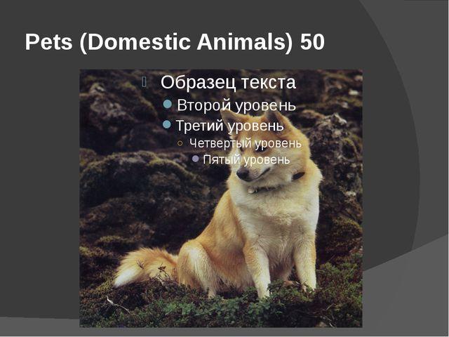 Pets (Domestic Animals) 50