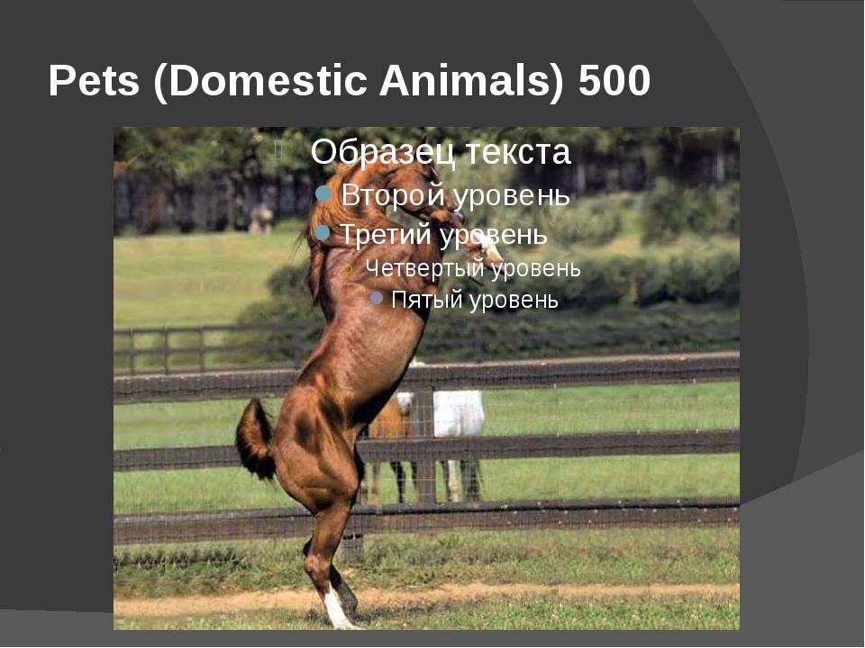 Pets (Domestic Animals) 500
