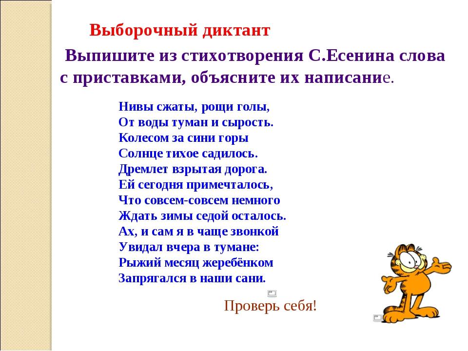 Выборочный диктант Выпишите из стихотворения С.Есенина слова с приставками, о...