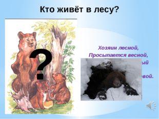 Хозяин лесной, Просыпается весной, А зимой под вьюжный вой Спит в берлоге сн