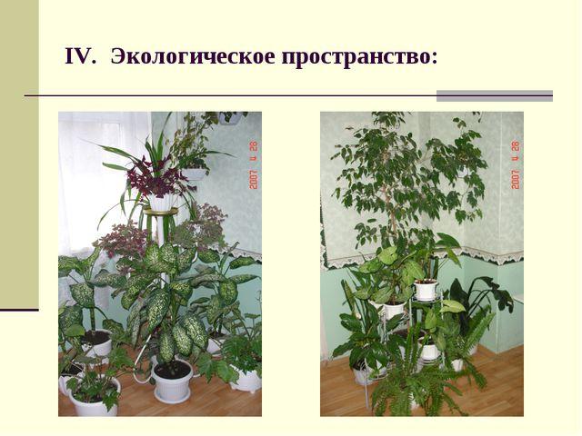 IV. Экологическое пространство: