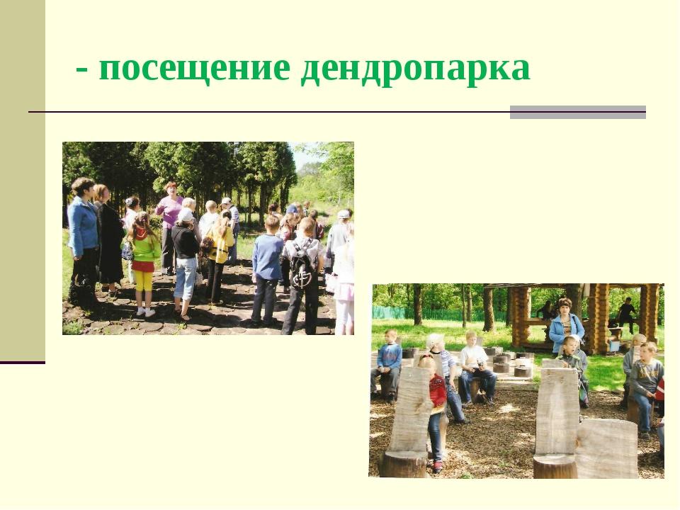 - посещение дендропарка