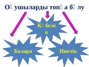 Оқушыларды топқа бөлу Көбелек Инелік Балара