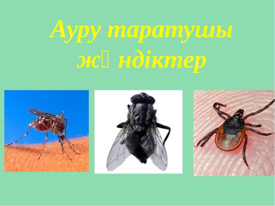 Ауру таратушы жәндіктер
