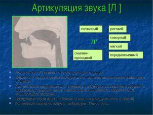 Артикуляция звука [Л′] Положение губ зависит от последующих гласных; Верхние