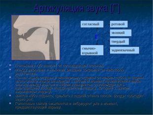Артикуляция звука [Г] Положение губ зависит от последующих гласных; Между вер