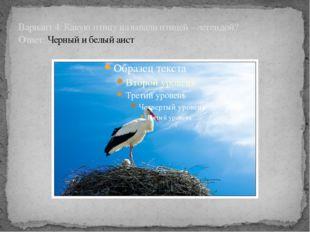 Вариант 4: Какую птицу называли птицей – легендой? Ответ: Черный и белый аист