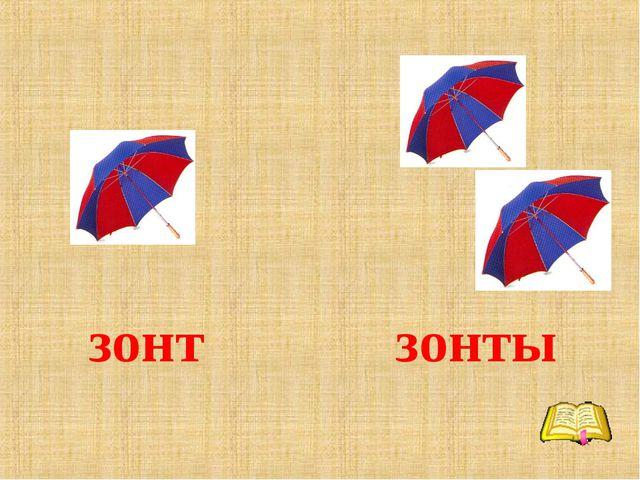 зонт зонты