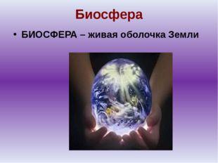 Биосфера БИОСФЕРА – живая оболочка Земли