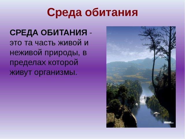 Среда обитания СРЕДА ОБИТАНИЯ - это та часть живой и неживой природы, в преде...