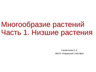 Многообразие растений Часть 1. Низшие растения Силантьева Е.Н. МБОУ «Хоринска