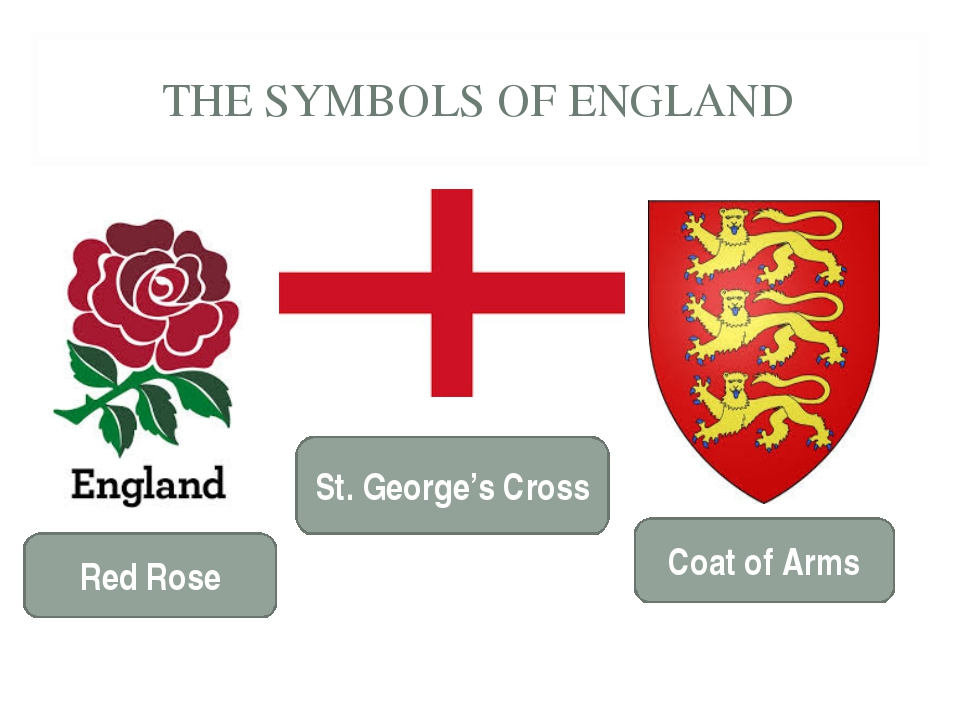 THE SYMBOLS OF ENGLAND Red Rose St. George's Cross Coat of Arms