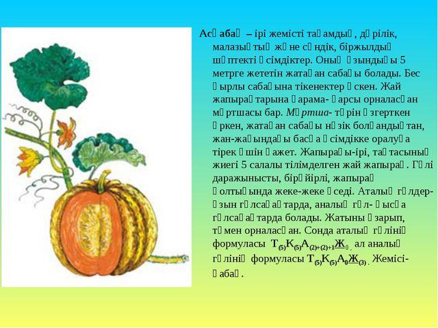 Асқабақ – ірі жемісті тағамдық, дәрілік, малазықтық және сәндік, біржылдық шө...