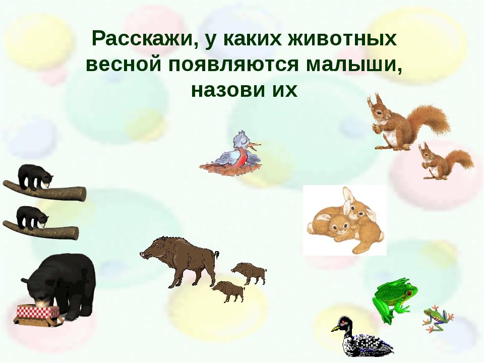Расскажи, у каких животных весной появляются малыши, назови их