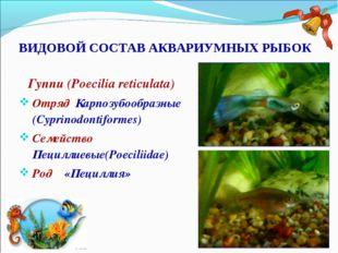 ВИДОВОЙ СОСТАВ АКВАРИУМНЫХ РЫБОК Гуппи (Poecilia reticulata) Отряд Карпозубоо