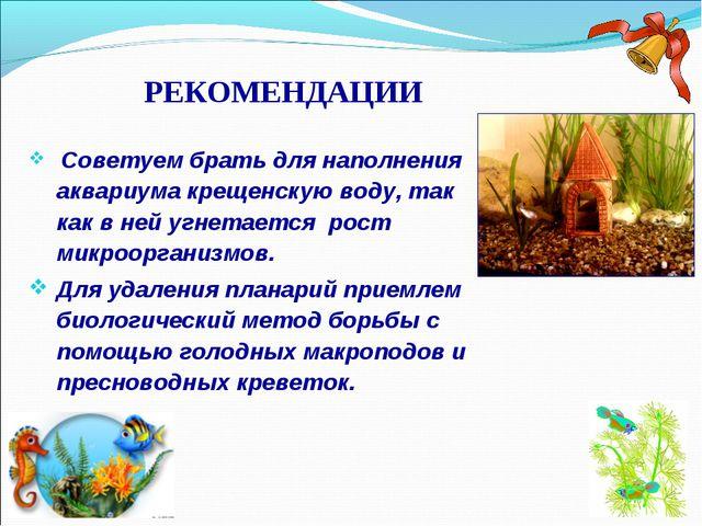 РЕКОМЕНДАЦИИ Советуем брать для наполнения аквариума крещенскую воду, так как...