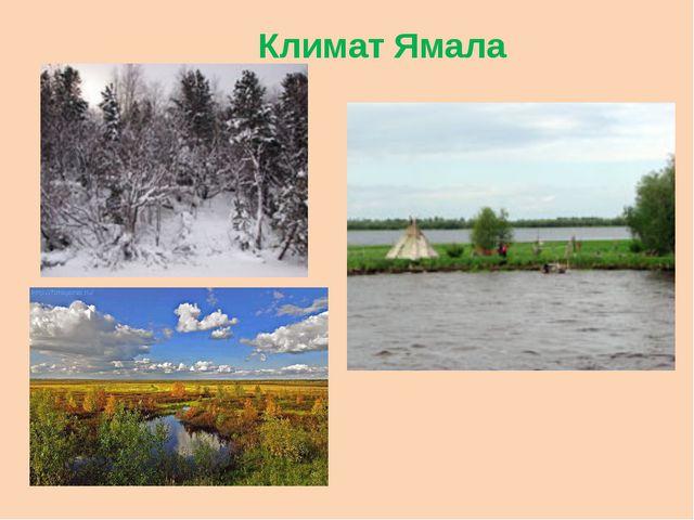 Климат Ямала