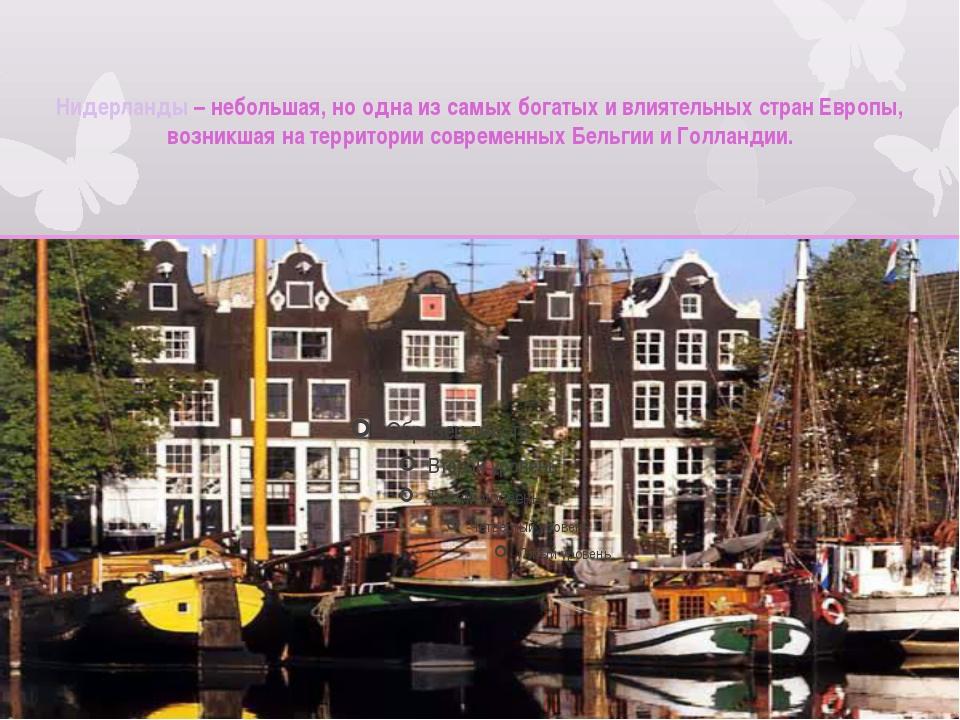 Нидерланды – небольшая, но одна из самых богатых и влиятельных стран Европы,...