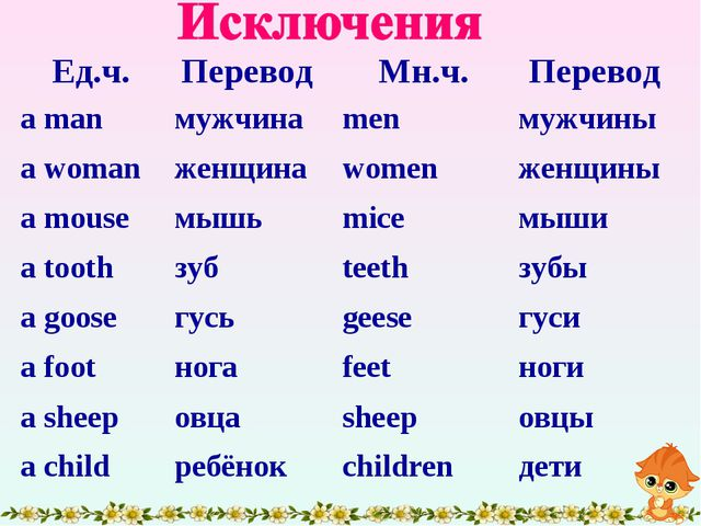 Ед.ч.Перевод Мн.ч.Перевод a manмужчинаmenмужчины a womanженщинаwomen...