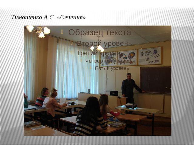 Тимошенко А.С. «Сечения»