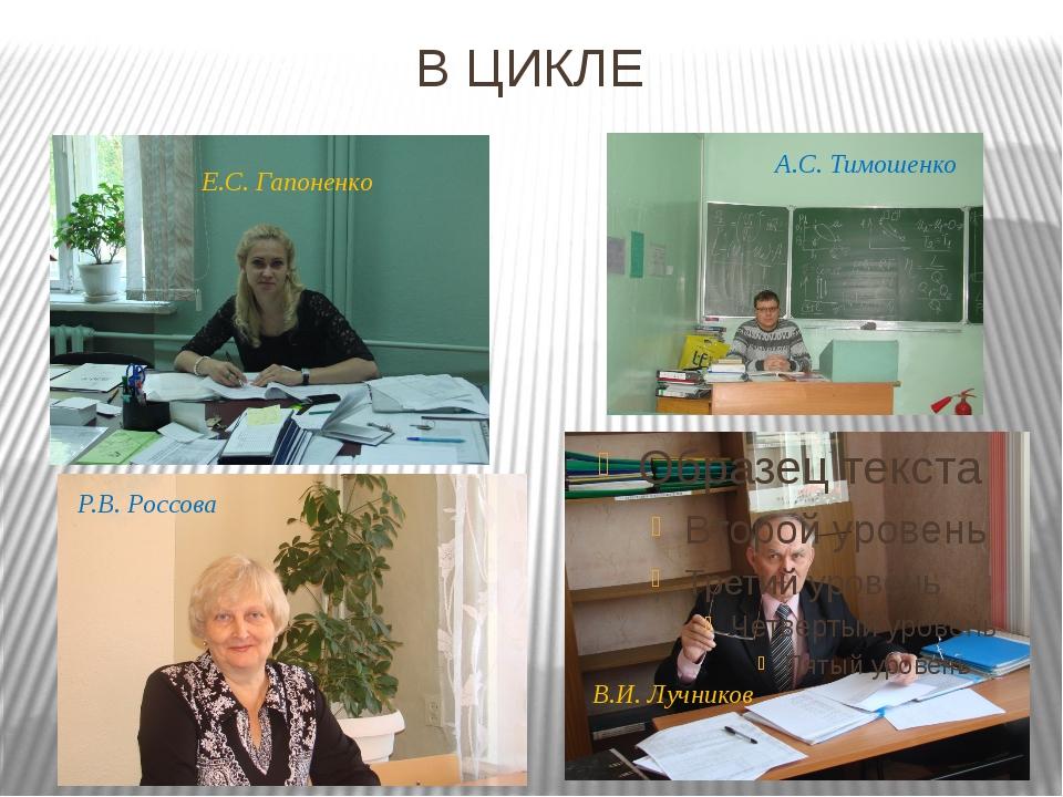 В ЦИКЛЕ В.И. Лучников Е.С. Гапоненко Р.В. Россова А.С. Тимошенко