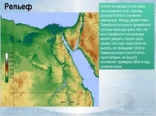 Рельеф Египет не находится на стыке тектонических плит, поэтому рельеф Египта