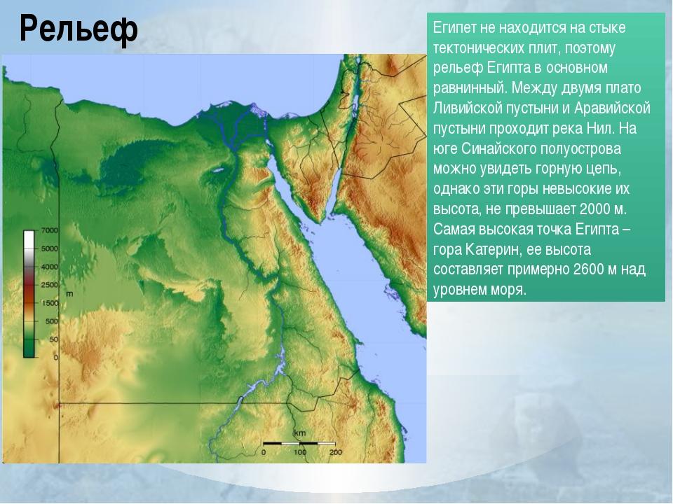 Рельеф Египет не находится на стыке тектонических плит, поэтому рельеф Египта...