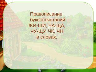 Правописание буквосочетаний ЖИ-ШИ, ЧА-ЩА, ЧУ-ЩУ, ЧК, ЧН в словах.