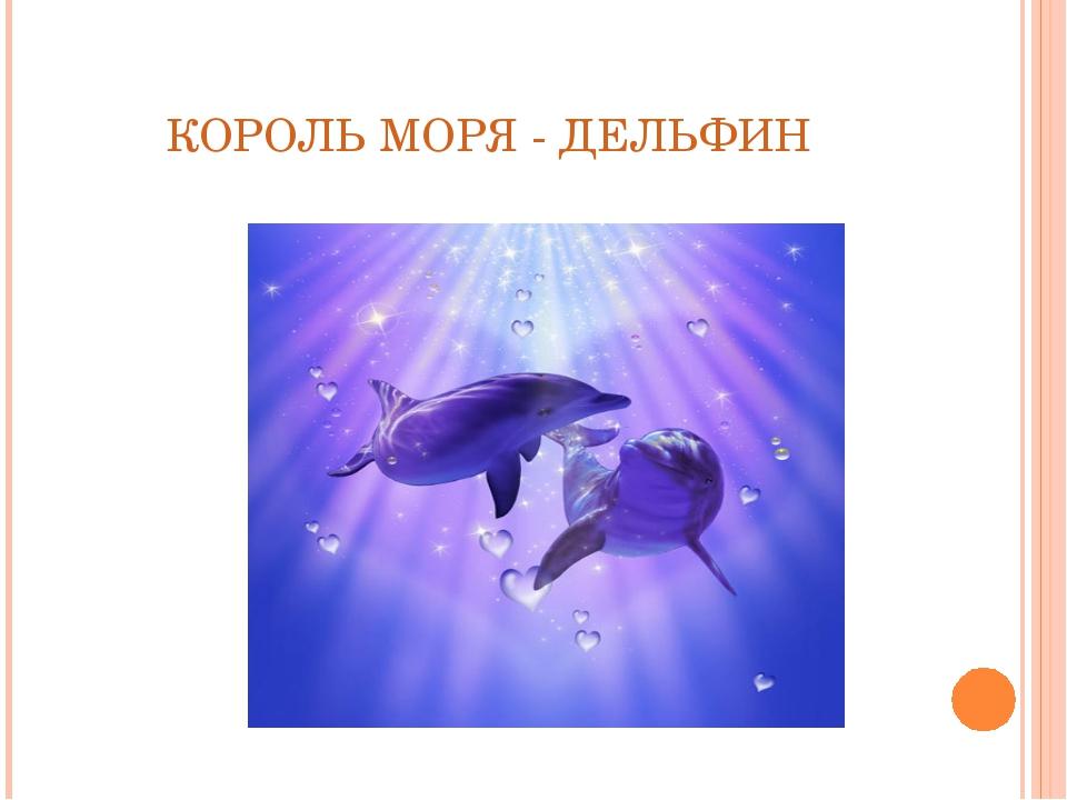КОРОЛЬ МОРЯ - ДЕЛЬФИН