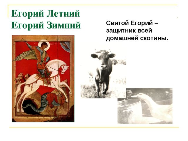Егорий Летний Егорий Зимний Святой Егорий – защитник всей домашней скотины.