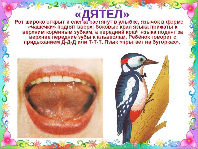 «ДЯТЕЛ» Рот широко открыт и слегка растянут в улыбке, язычок в форме «чашечки...