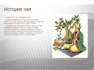 История чая Родина чая – Юго-Западный Китай. Первое упоминание о чае восход