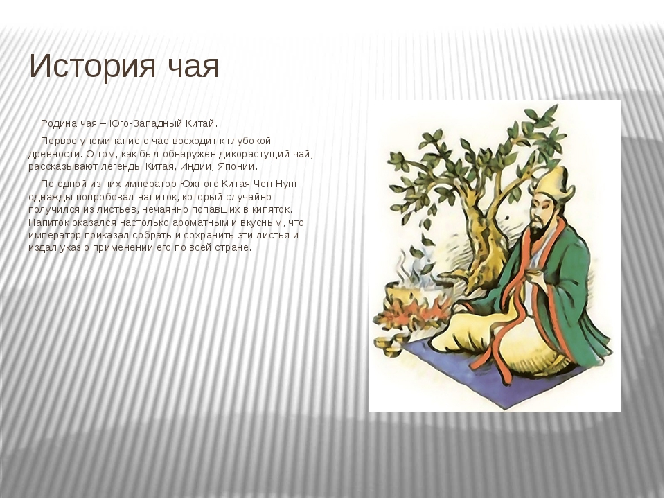 История чая Родина чая – Юго-Западный Китай. Первое упоминание о чае восход...