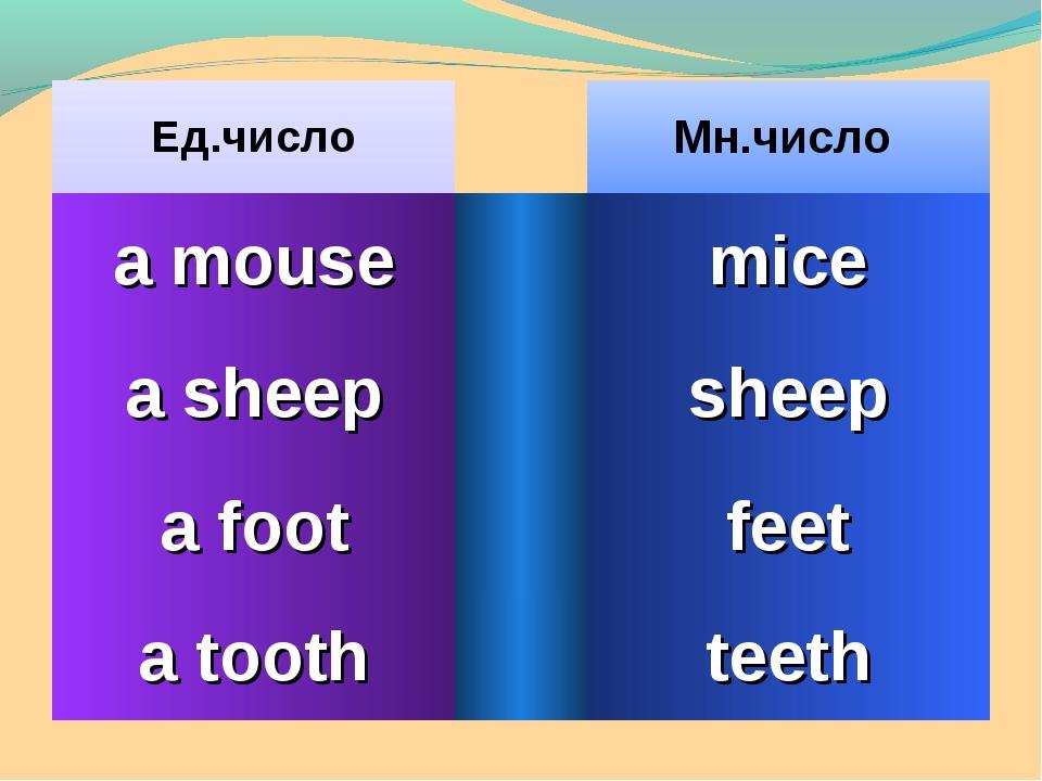 Ед.числоМн.число a mousemice a sheepsheep a footfeet a toothteeth