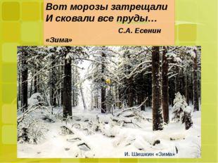 Вот морозы затрещали И сковали все пруды… С.А. Есенин «Зима» Вот морозы затр