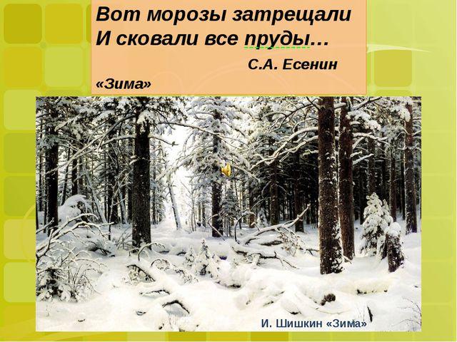 Вот морозы затрещали И сковали все пруды… С.А. Есенин «Зима» Вот морозы затр...