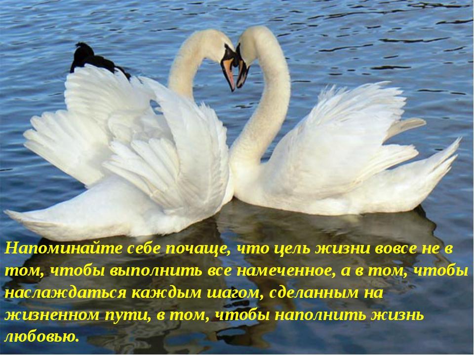 Напоминайте себе почаще, что цель жизни вовсе не в том, чтобы выполнить все н...