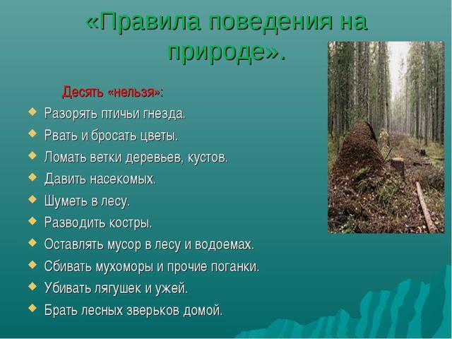«Правила поведения на природе». Десять «нельзя»: Разорять птичьи гнезда. Рват...