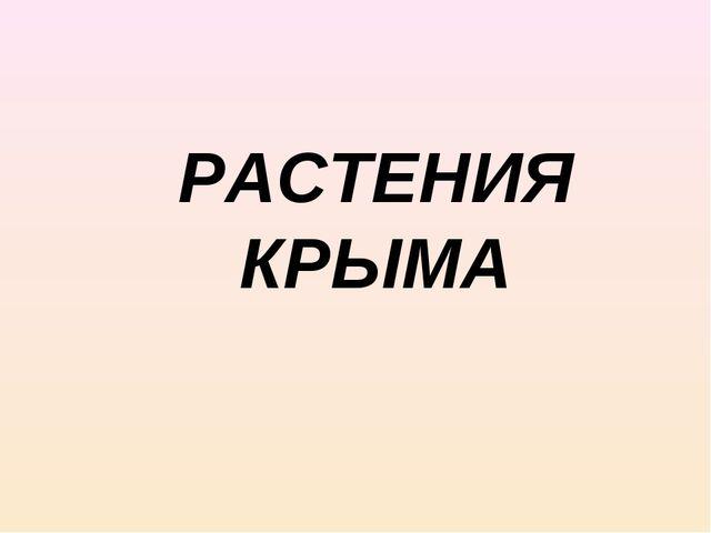 РАСТЕНИЯ КРЫМА