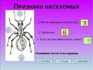ПРИЗНАКИ НАСЕКОМЫХ 2. Число ног 1.Число основных частей тела 3. Есть ли чувст