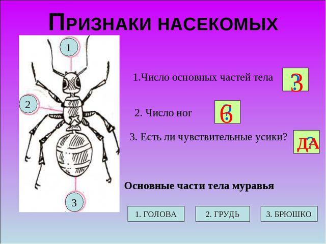 ПРИЗНАКИ НАСЕКОМЫХ 2. Число ног 1.Число основных частей тела 3. Есть ли чувст...